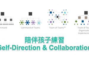 self-direction-collaboration